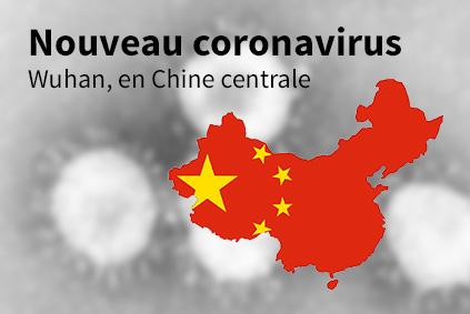 Flambée d'un nouveau coronavirus (novel-CoV) dans la métropole de ...